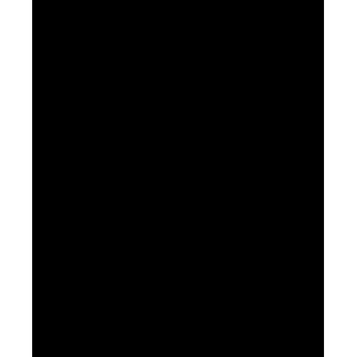 Allegri Крепление настенное 4-х коленное