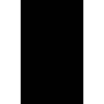 Allegri Крепление потолочное для 2 проекторов (спарка)