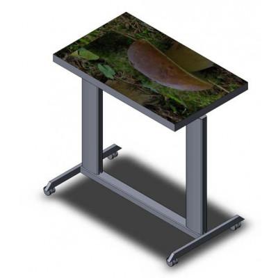 Allegri Интерактивный наклонный стол 2